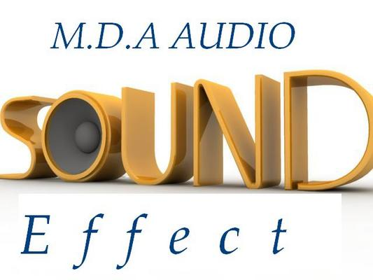 Product picture Shopping Centre Sound Effect Wav